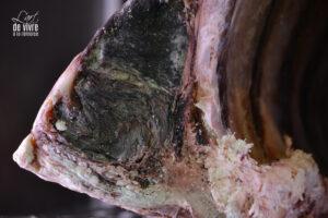il y a une sorte de noblesse dans cette viande que l'on a laissé maturer longuement avec soin.