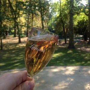Dégustation de l'extra âge brut rosé au parc de la patte d'oie